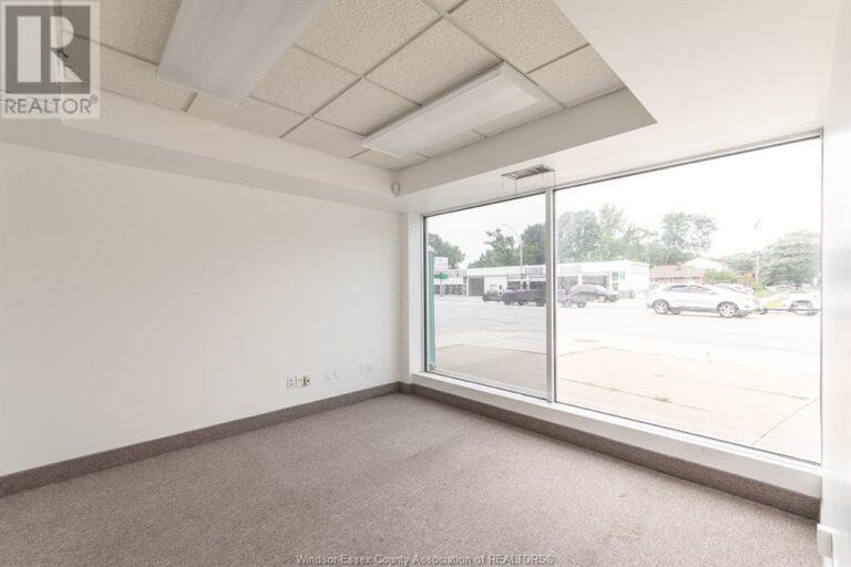 Image nr 24 for listing 3905-3911 TECUMSEH ROAD East, Windsor