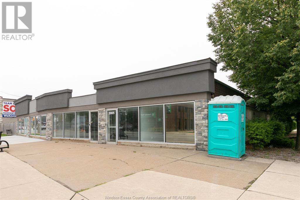 Image nr 5 for listing 3905-3911 TECUMSEH ROAD East, Windsor